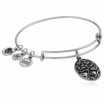 Alex and Ani Because I love you- Friend II Expandable Bracelet - Rafaelian Silver Finish - CN12CLZ7BUP