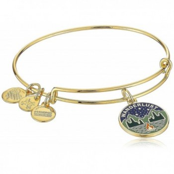 Alex and Ani Words are Powerful- Wanderlust Bangle Bracelet - C2183N0KI6D