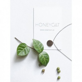 HONEYCAT Necklace Minimalist Delicate Jewelry in Women's Chain Necklaces
