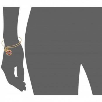 Alex Ani Charity Rafaelian Bracelet in Women's Bangle Bracelets