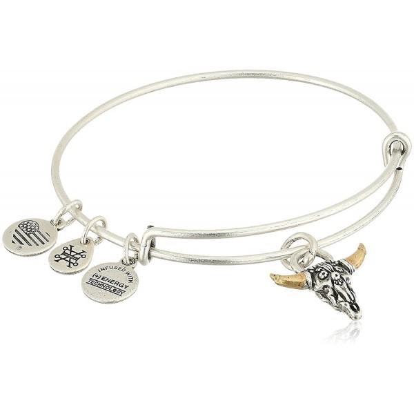 Alex and Ani Spirited Skull Bangle Bracelet- Expandable - Rafaelian Silver - CS183N0QSQW