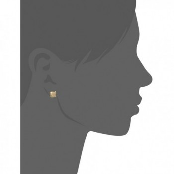 Napier Pattern Balance Two Tone Earrings in Women's Jewelry Sets