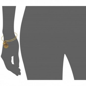 Alex Ani Expandable Rafaelian Bracelet in Women's Bangle Bracelets