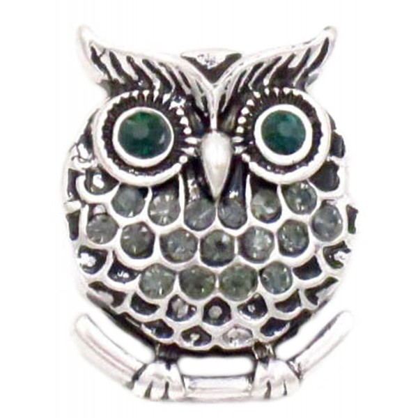 Owl with Teal Eyes Ginger Snap - Snap Button - CR17WWHSAWO