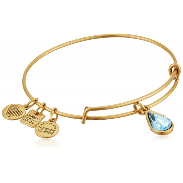 Alex and Ani Charity By Design Living Water International Bangle Bracelet - Rafaelian Gold - C911JV1N5BR