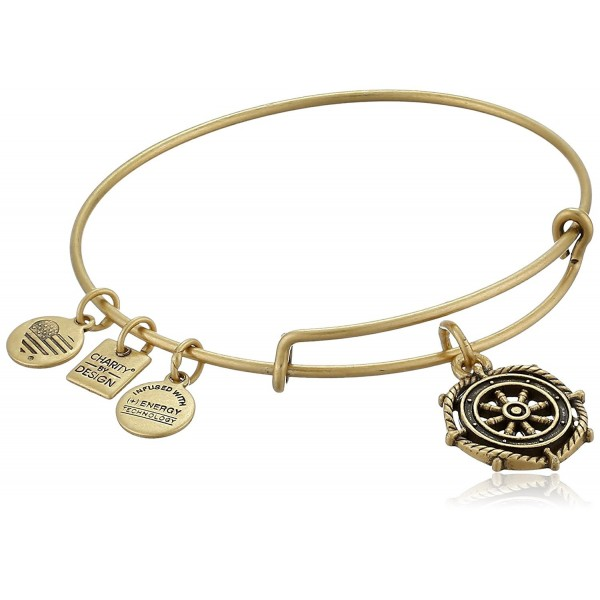 Alex and Ani Charity By Design Take the Wheel Bangle Bracelet - Rafaelian Gold - C411XEXGK6P