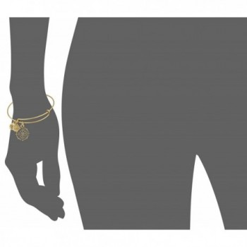 Alex Ani Charity Rafaelian Bracelet