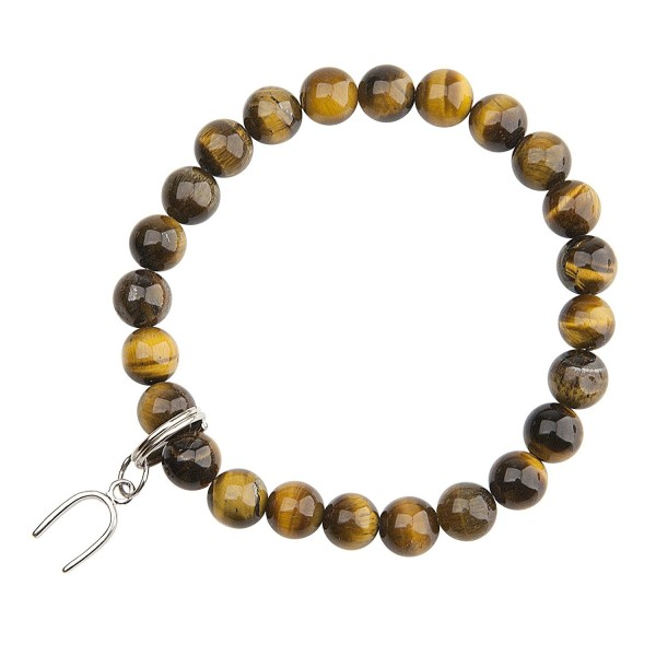 Tigers Eye / Horse Shoe - Protection Good Luck - CY113PLYLS5